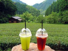 静岡市「お茶屋さん直営カフェ」3選!銘茶産地のお茶と茶畑の絶景