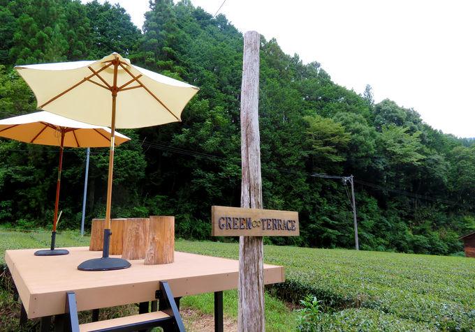 茶畑のティーテラスを貸し切ってピクニックをしよう!