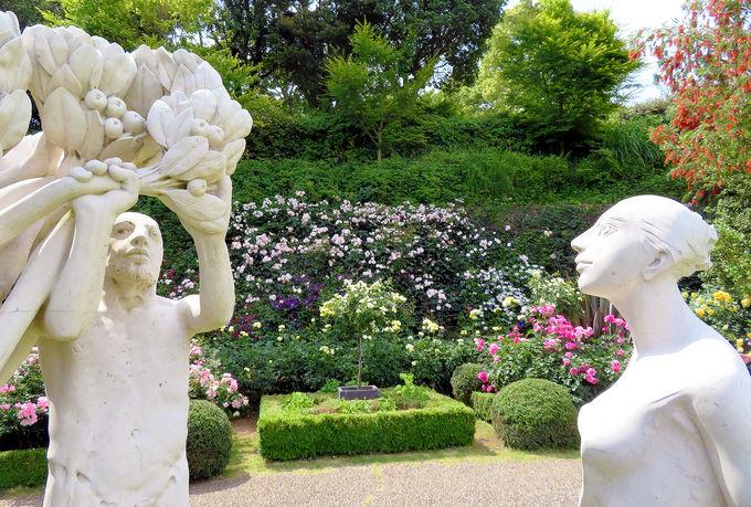 庭園と花と彫刻の調和を楽しもう!