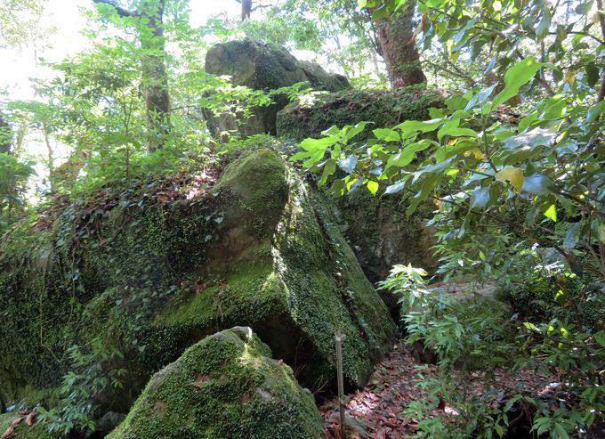 遠州七不思議に県内最大級の磐座!神秘の阿波々神社