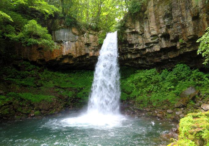 水量豊富で迫力満点!「萬城の滝」(伊豆市)