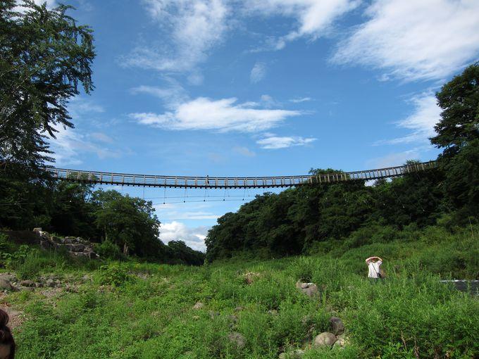 真正面から滝を眺められる専用吊り橋