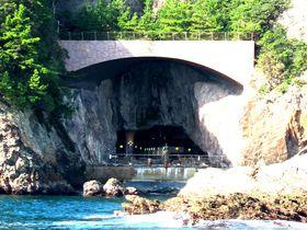 新鮮マグロは冬が旬!洞窟温泉も魅力の宿・和歌山「万清楼」