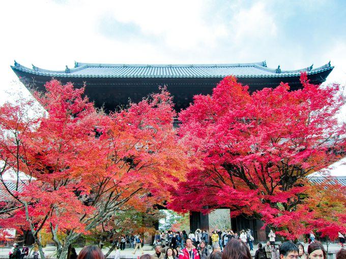もみじの赤がより映える重厚な三門「南禅寺」