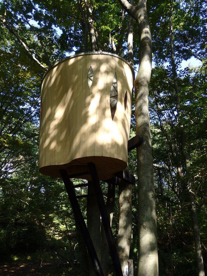 """樹の上の """"茶室""""。吉野杉で造られた「又庵」"""