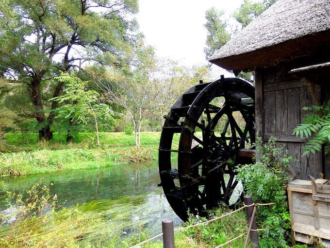 黒澤映画に登場!美しい水辺にたたずむ水車小屋
