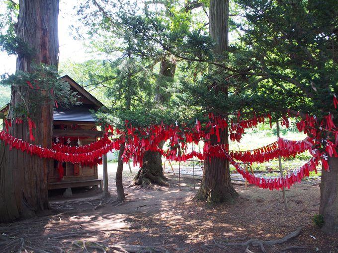 どこか神秘的…赤い布が垂れ下がる境内