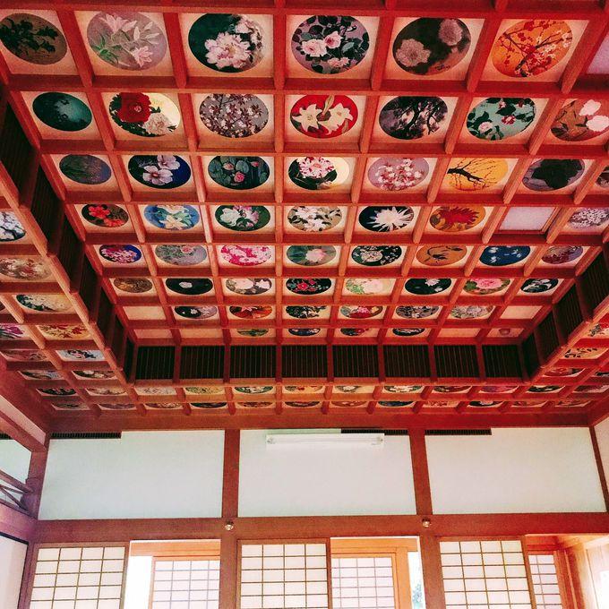午前:春夏秋冬美しい「稲渕の棚田」と天井画が見事な「橘寺」へ