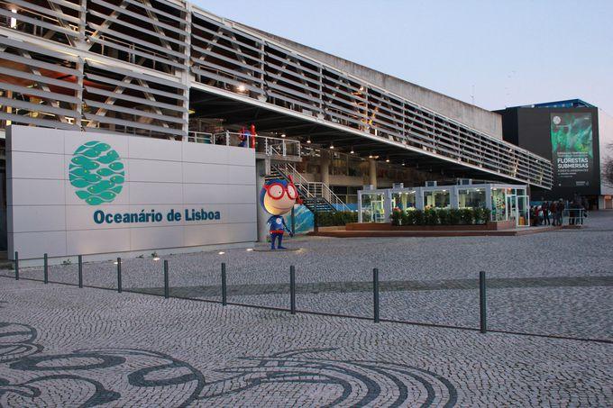 10.リスボン水族館
