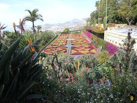花と緑の競演!ポルトガル領マデイラ島「マデイラ植物園」