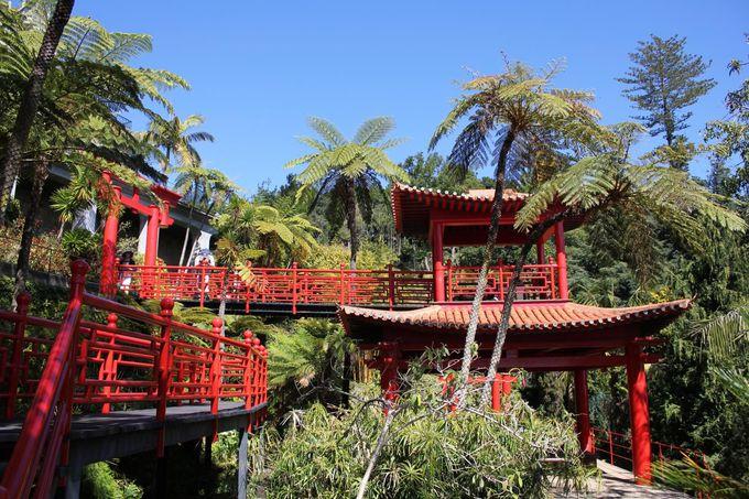 西洋と東洋とが出会う「オリエンタル庭園」