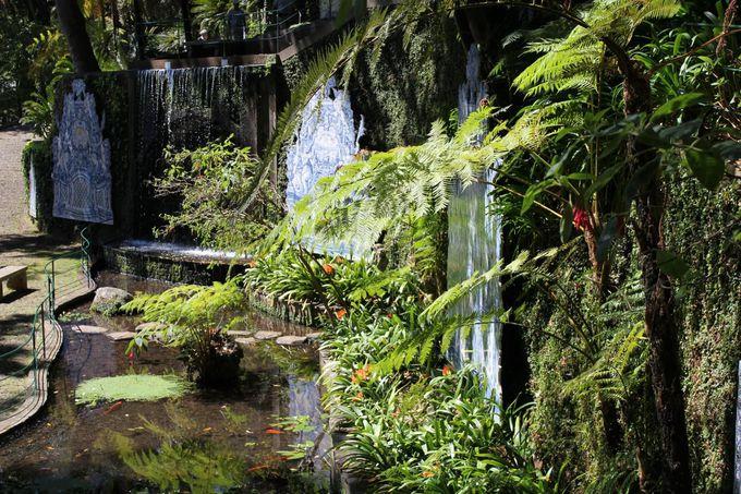 植物園を彩る美しい「アズレージョ」とエキゾチックな装飾品
