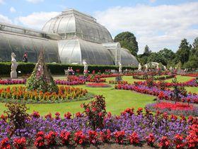 ロンドン「キューガーデン」歴史と伝統を誇る由緒ある植物園