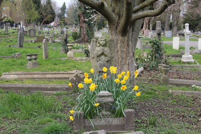 花が咲く季節に訪れたい「サウス・イーリング・セメタリー」