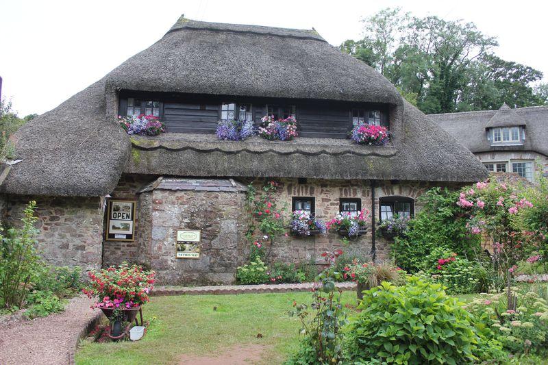 ジオパーク認定「トーキー」イギリスの田園地帯と海辺の風景