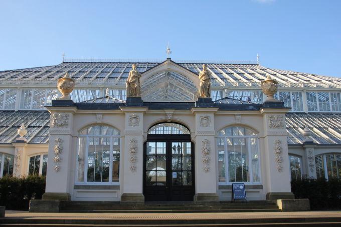 ヴィクトリア朝を代表する温室「テンパレートハウス」