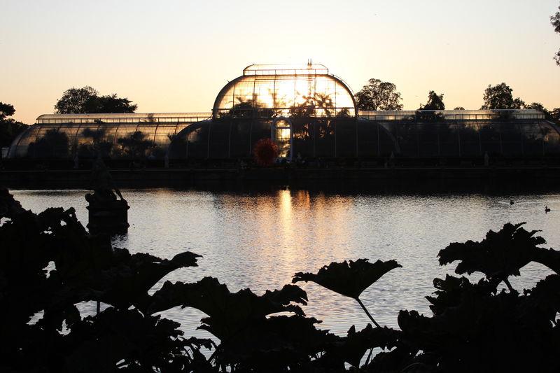 ロンドン「キューガーデン」秋冬でも楽しめる世界遺産の植物園