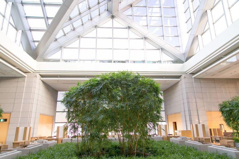 パークハイアット東京「ピークラウンジ」国内最強クラスのアフタヌーンティーが楽しめる高層ラウンジ