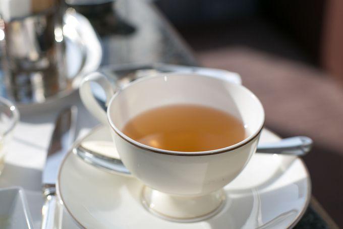 世界最高クラスのお茶が選び放題、飲み放題