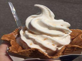 牧場直営ならではの新鮮な味わい!大沼・山川牧場のジャージーソフトクリーム