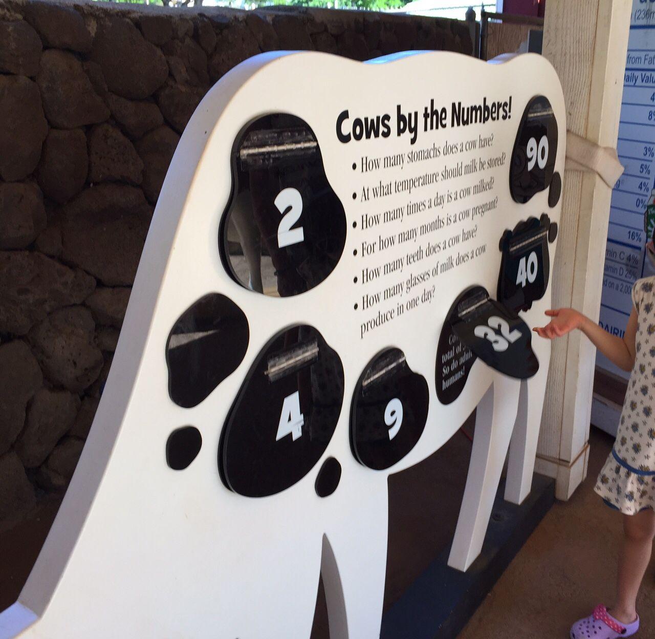 子連れに人気!KEIKI ZOOがある「ホノルル動物園」は遊び心満載