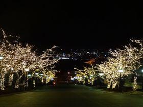 冬こそ函館へ!「はこだて冬フェスティバル」で光輝くベイエリアと元町地区を散策