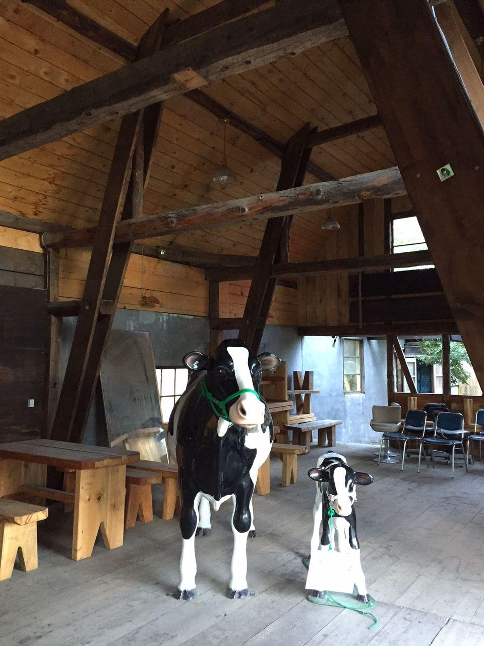 酪農体験もできるリバティヒル広瀬牧場