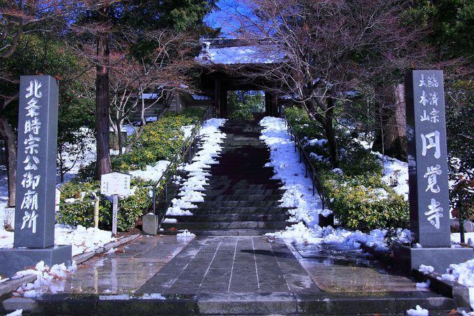 積雪の庭園風景が最も和を感じさせる「冬」