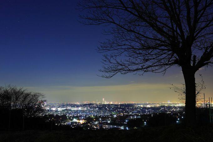 横浜市街を一望!ビューポイントからの大パノラマ