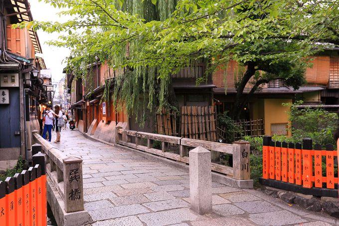 白川を渡す「巽橋」からの桜並木の眺めは京都の春の象徴といえるもの!