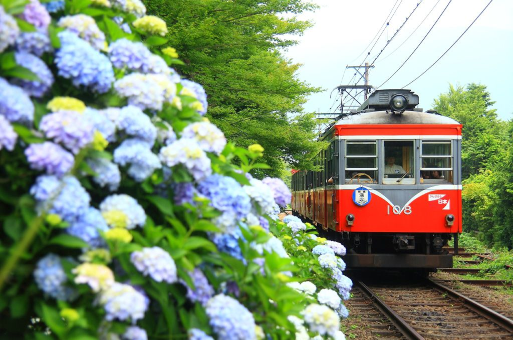 「小涌谷駅」〜「強羅駅」間の撮影ポイント