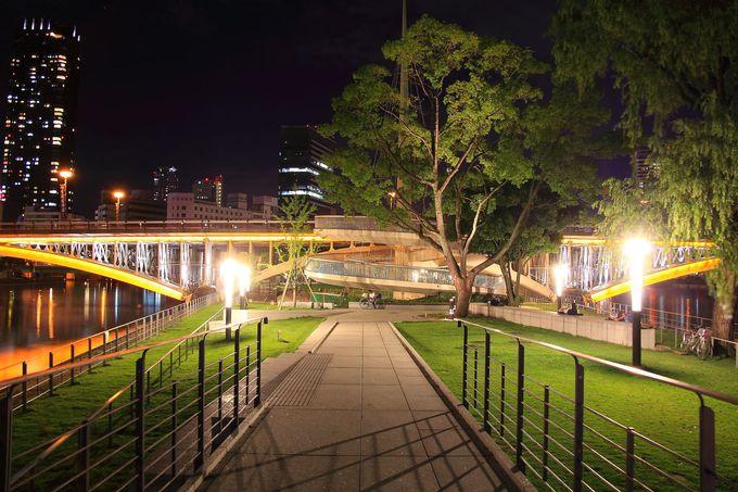 中之島公園のちょうど中央はバラ園が広がる開放的空間!