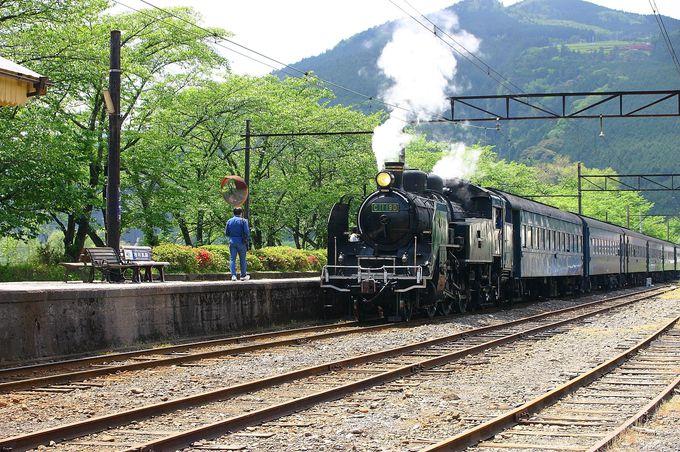 「家山駅」周辺の撮影地