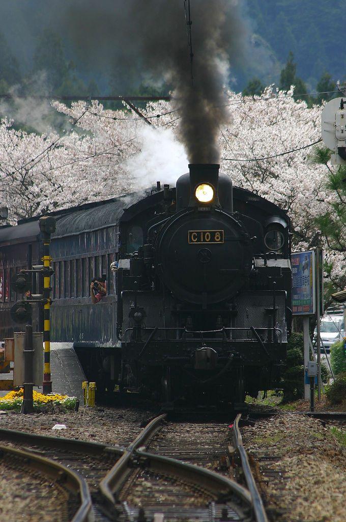 レトロ色濃い「田野口駅」、SL発車シーンは必見「駿河徳山駅」、桜並木の「青部駅」