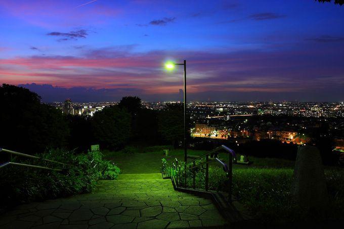 スポット名称も雰囲気もピカイチ!都立桜ヶ丘公園ゆうひの丘