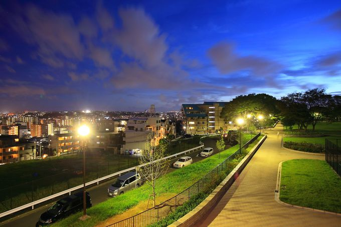 横浜市南区方面の住宅街を背景に綺麗に整備された園内方面
