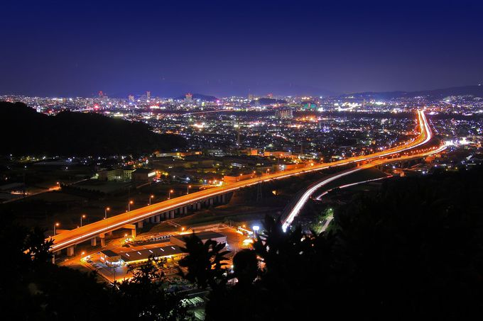山道終点のみかん畑からは極上夜景が!夜景スポット「小坂」
