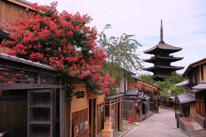 清水寺から徒歩10分:八坂の塔