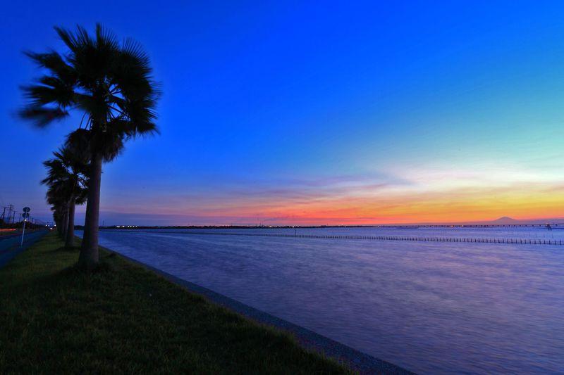 絶景の水辺夜景を見に行こう!千葉県「袖ヶ浦海浜公園展望台」