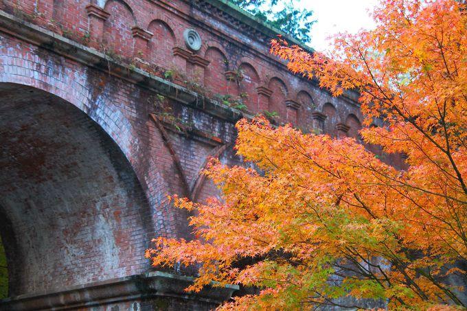 南禅寺の裏手にたたずむ紅葉の穴場!京都「最勝院高徳庵」