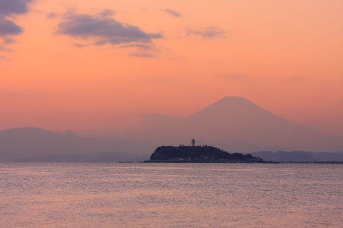ヤシの木の間から望むことができる江ノ島と富士山
