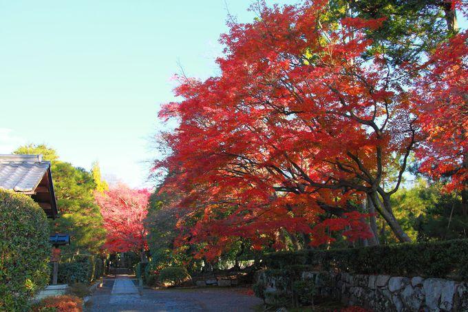 「天龍寺」には塔頭と呼ばれる小院も数多く存在