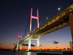 横浜港の夜景を一望!開放感抜群な眺めの「大黒ふ頭西緑地」
