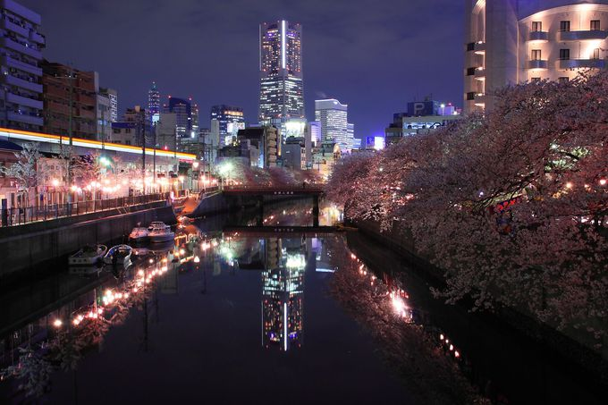 夜間は川の北側を走る京急の電車の軌跡と!「旭橋」