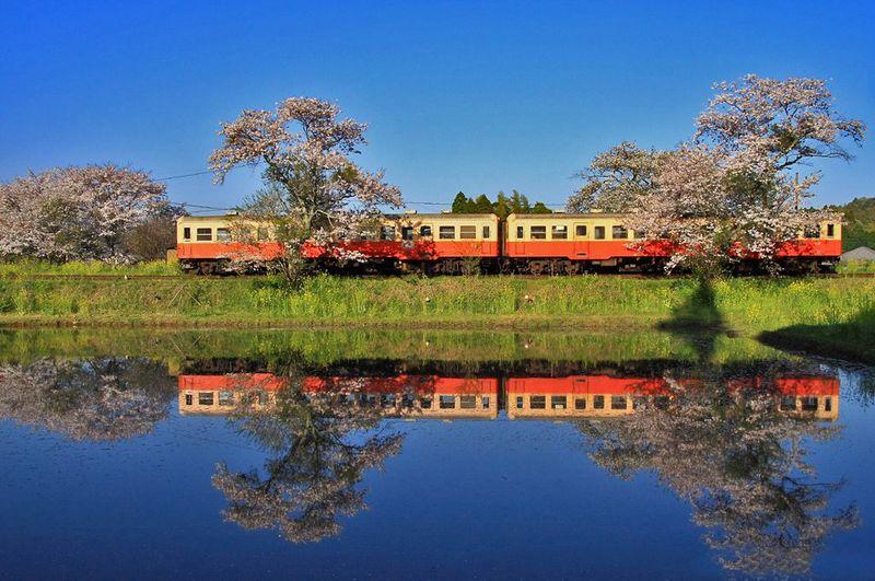 春色満載な昭和の世界へ出発進行!「小湊鐵道」撮影スポット5選