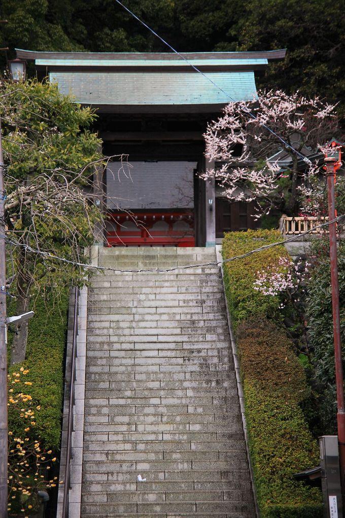 「荏柄天神社」の参道は鎌倉らしい路地の突き当たりに存在!
