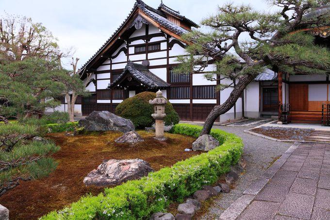 山門横の枝垂桜は必見!「妙覚寺」