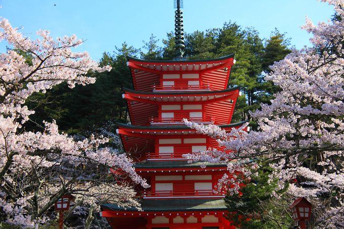 参道階段を登り詰めれば真っ赤な忠霊塔がお出迎え!