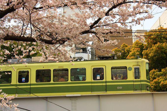 「藤沢駅」を出発してすぐの高架区間!