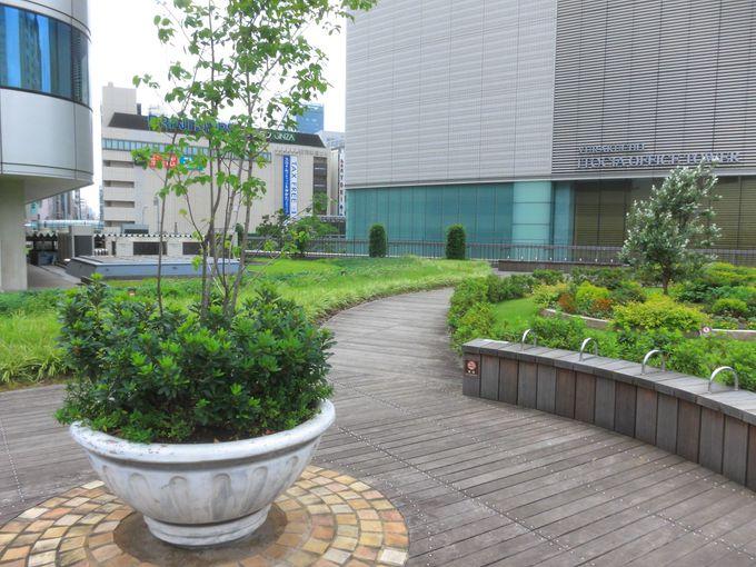 都心にしては緑が多い展望庭園「有楽町コリーヌ」!